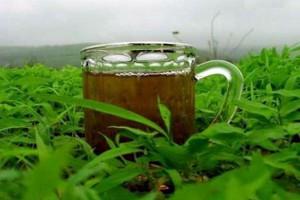 كنوز شاي الزعتر الطبيعية