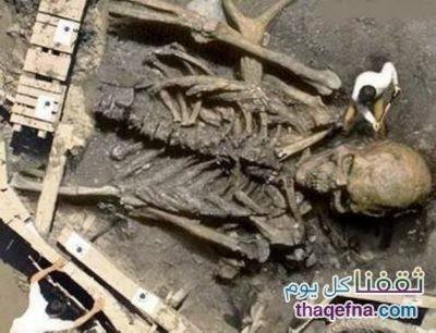 أجسام قوم سيدنا هود