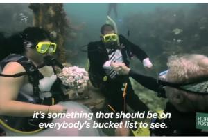 بالفيديو حفل زفاف في قاع البحر