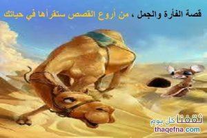 قصة الفأرة والجمل ، من أروع القصص التي سوف تقرأها في حياتك!!