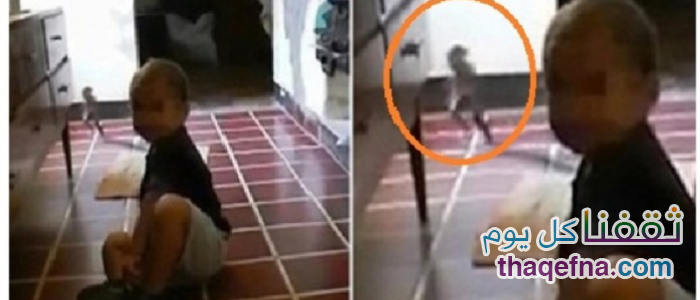 بالفيديو.. كائن غريب يركض أمام الكاميرا أثناء تصوير الأم لطفلها وسبب لها الرعب!!