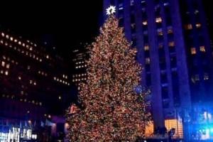 إفتتاح عيد الميلاد المجيد بأكبر شجرة للميلاد بالشرق الأوسط