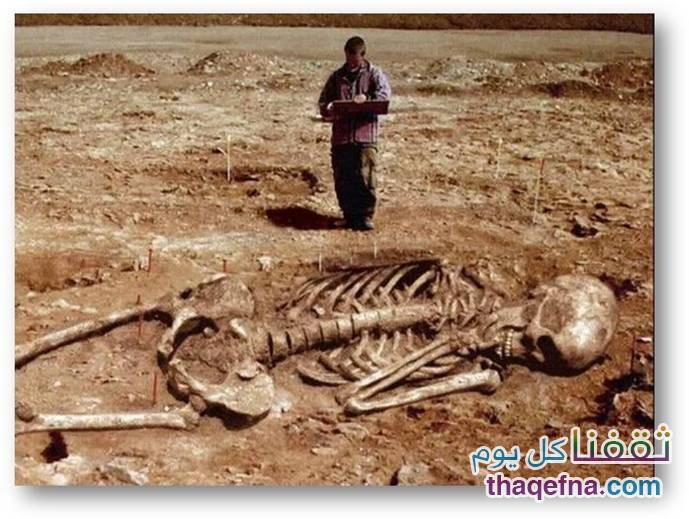 هل تعلم كم كان حجم قوم عاد الذين ذكرهم الله في القرآن الكريم- لن تصدقوا كم كان طول قوم عاد