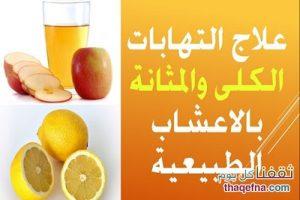 علاج إلتهابات الكلى والمثانة بأفضل المواد الطبيعية وأيضاً علاج كثرة التبول أثناء الليل /amp/
