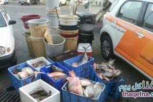 سوريين يتبولون على السمك وتدشين هاشتاج #سوريين_يتبولون_على_السمك على تويتر ويثير غضب المواطنين
