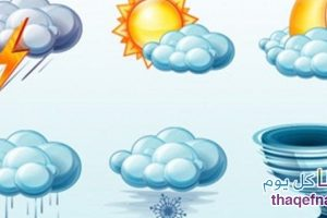درجات الحرارة غدًا في مصر الإثنين 13-2-2017 وتوقعات بتساقط أمطار شديدة مع برق ورعد