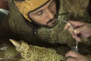 ما الذي يشربه رامز جلال في برنامجه رامز تحت الأرض قبل البدء بالمقلب ؟