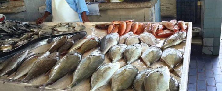 أسعار الأسماك في شم النسيم سترتفع بنحو 20% وتغييرات مرتقبة في سوق السمك