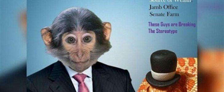 سرقة ملايين الجنيهات في نيجيريا والسارق أفعى وعصابة قرود وايقاف للموظفين !