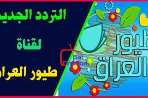 تردد قناة طيور العراق الجديد وضبط تردد قناة toyor aliraq للأطفال على قمر النايلسات !