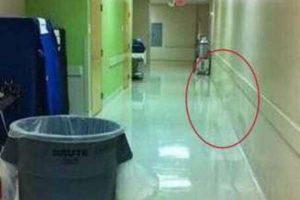 شاهدوا بالصور شيء مرعب يظهر في كاميرات إحدى المستشفيات ويسبب الرعب بين الموظفين !